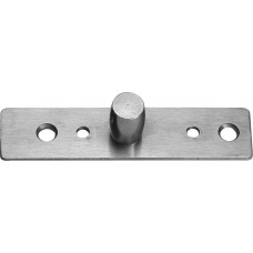 Top Patch Pivot Plate Glass Door - Stainless Brushed