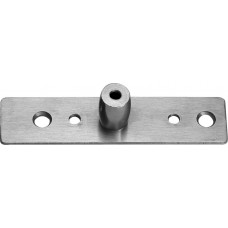 PRIVIGLAZE Top Patch Pivot Plate Smart Glass Door - Stainless Brushed